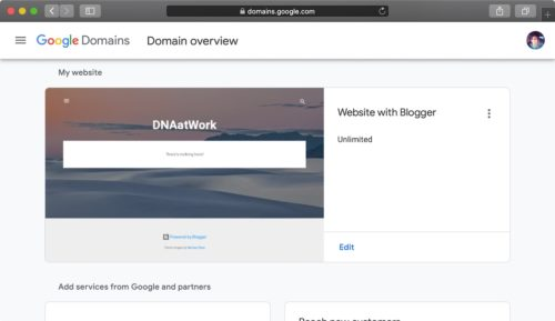 Google Sites / Blogger Domain Setup